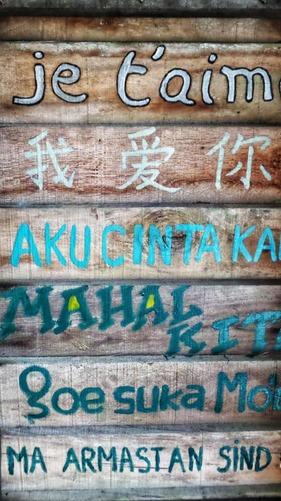 Es gibt 6000 Sprachen weltweit - jede wird anders geschrieben